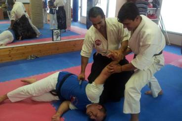 Seminar at Shotokan Center (04.07.13)