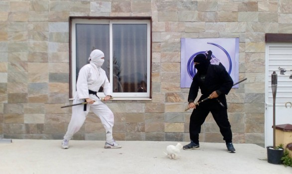NINJA TRAINING 7 APRIL